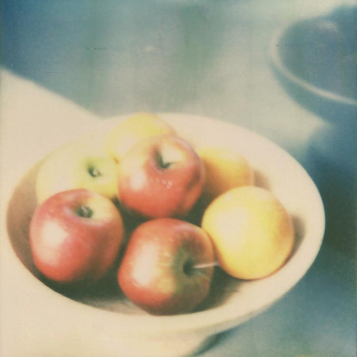 Polaroid Still Life 3